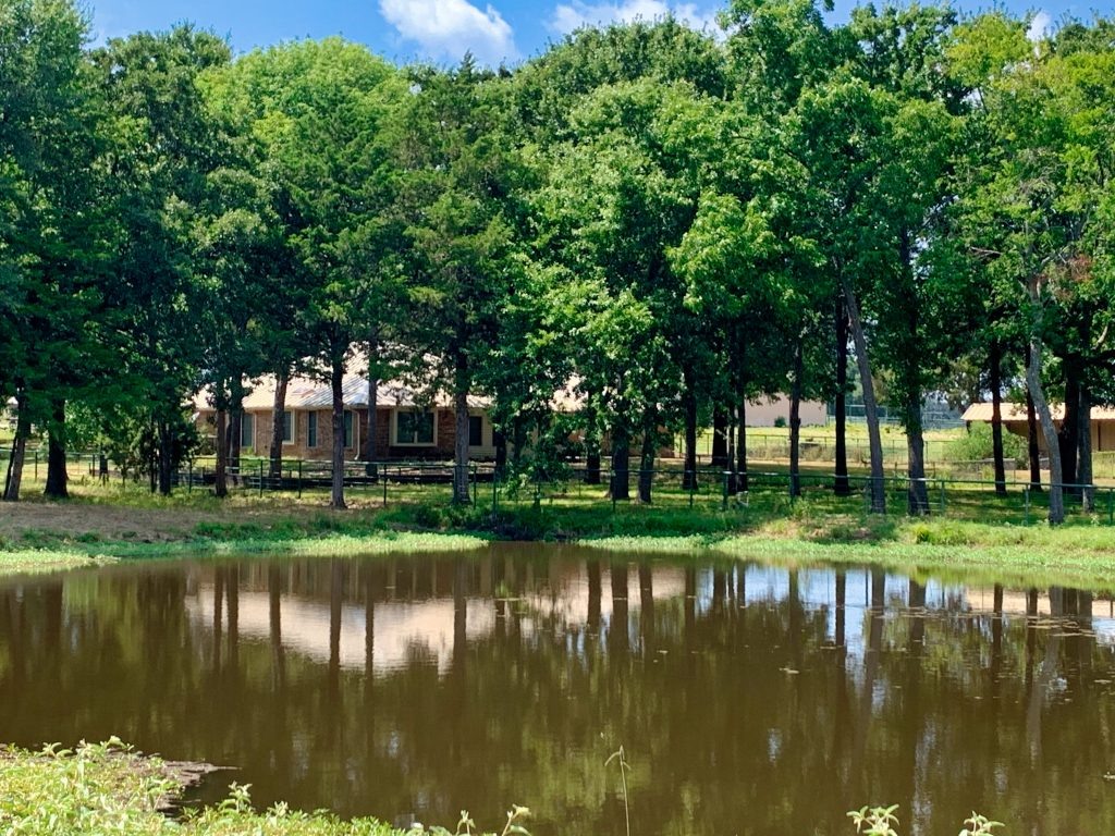 A pond in front of a house at Iron Bridge Ranch in Texas.