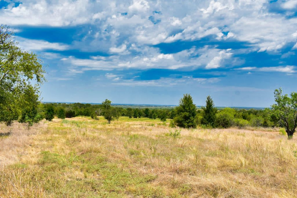 open pasture with views