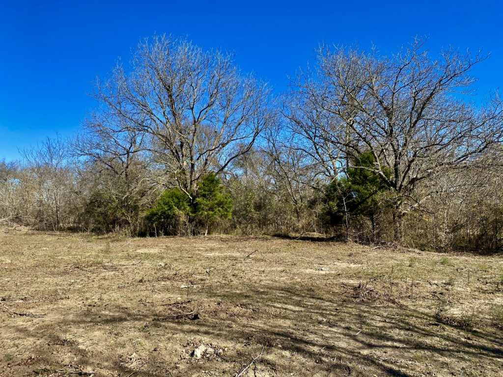 land with open space and a boundary with trees