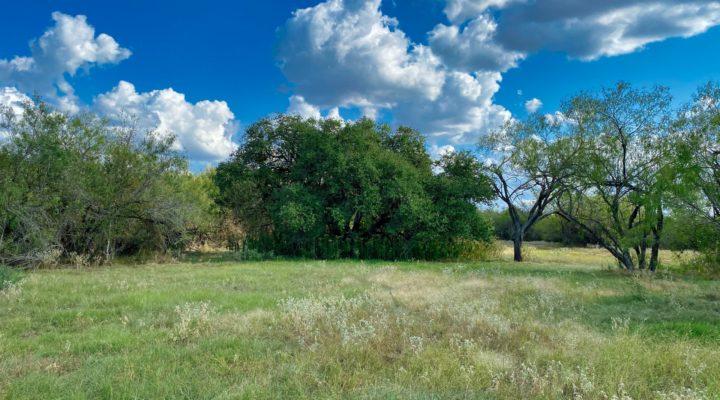 Magnolia Estates Tract I
